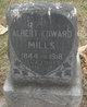 Albert Edward Mills