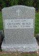 Giuseppe Burzi