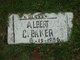 "Profile photo:  Albert C ""Blake"" Baker"
