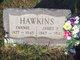 Mary Francis <I>Stubbins</I> Hawkins