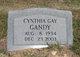 Cynthia Gay Gandy