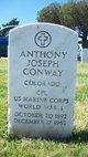 Anthony Joseph Conway