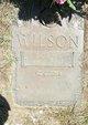 """Eudora Lucretia """"Dora"""" <I>Anderson</I> Wilson"""
