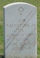 Joe Kaniatobe, Jr