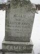 Profile photo:  Nellie Ames