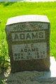 Profile photo:  J C Adams
