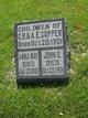 Profile photo:  John C Copper