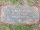 Alvin Virgil Anderson