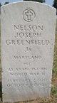 PFC Nelson Joseph Greenfield, Jr
