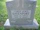 Elmer Lewis Davenport