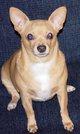 """Profile photo:  BooBoo """"Boo"""" Prendergast"""