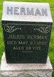 Julius Herman