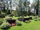 Mommila Cemetery