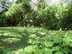 Acosta Cemetery