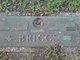 Mary Ellen <I>Sansing</I> Briggs