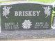 Mabel Catherine <I>Erdman</I> Briskey