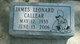 James Leonard Callear