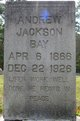 Profile photo:  Andrew Jackson Bay