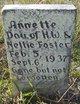 Profile photo:  Annette Foster