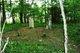 Burrell Family Cemetery