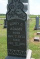Profile photo:  Henry D Adams