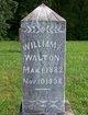William A Walton