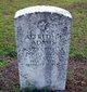 Profile photo:  Alfred Merritt Adams