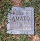 Profile photo:  Rose P Amato
