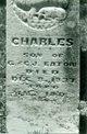 Charles Eaton