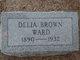 Delia <I>Brown</I> Ward