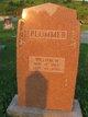 William M Plummer