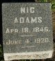Profile photo:  Nic Adams