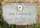 John Peter Davidson