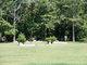 Athlone Cemetery