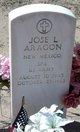 Jose L Aragon