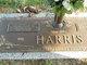 Margaret Elizabeth <I>Dalby</I> Harris