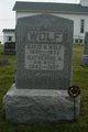 David Noll Wolf
