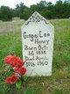 Ginger Lee Henry