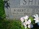 Robert Ernest Shipe