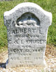Profile photo:  Albert L Kruger