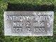 Profile photo:  Anthony P Abeln