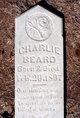 Charlie Beard