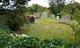 Babel Starnes Cemetery