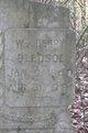 William Henry Bledsoe