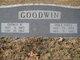 George Washington Goodwin