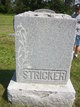 Profile photo:  Stricker