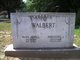 Theordore J Walbert