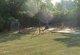 Gassett Family Cemetery