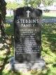 Profile photo:  Stebbins