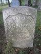 James Madison Orr